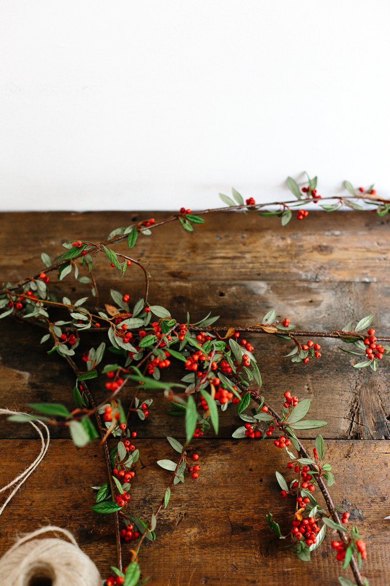 A wreath of berry vines