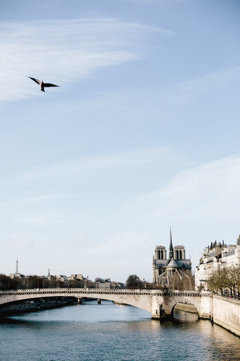 The view of the River Seine from the Pont de Sully bridge, Paris - A Paris Guide