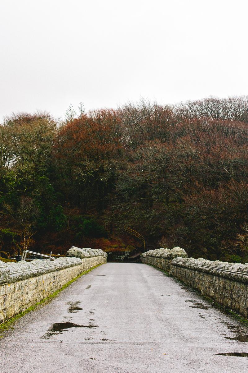 A long weekend in Devon
