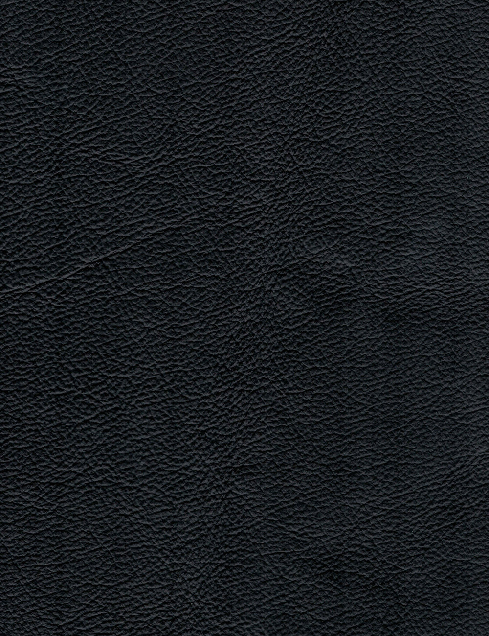 Beech Frame - Black Leather