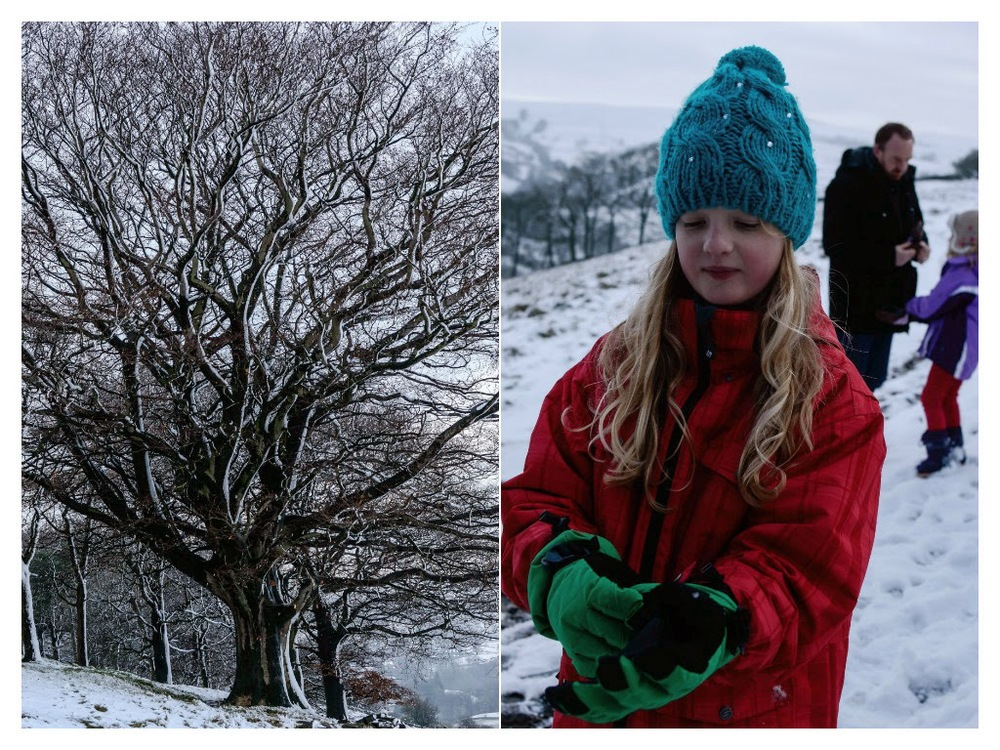 winter14g.jpg