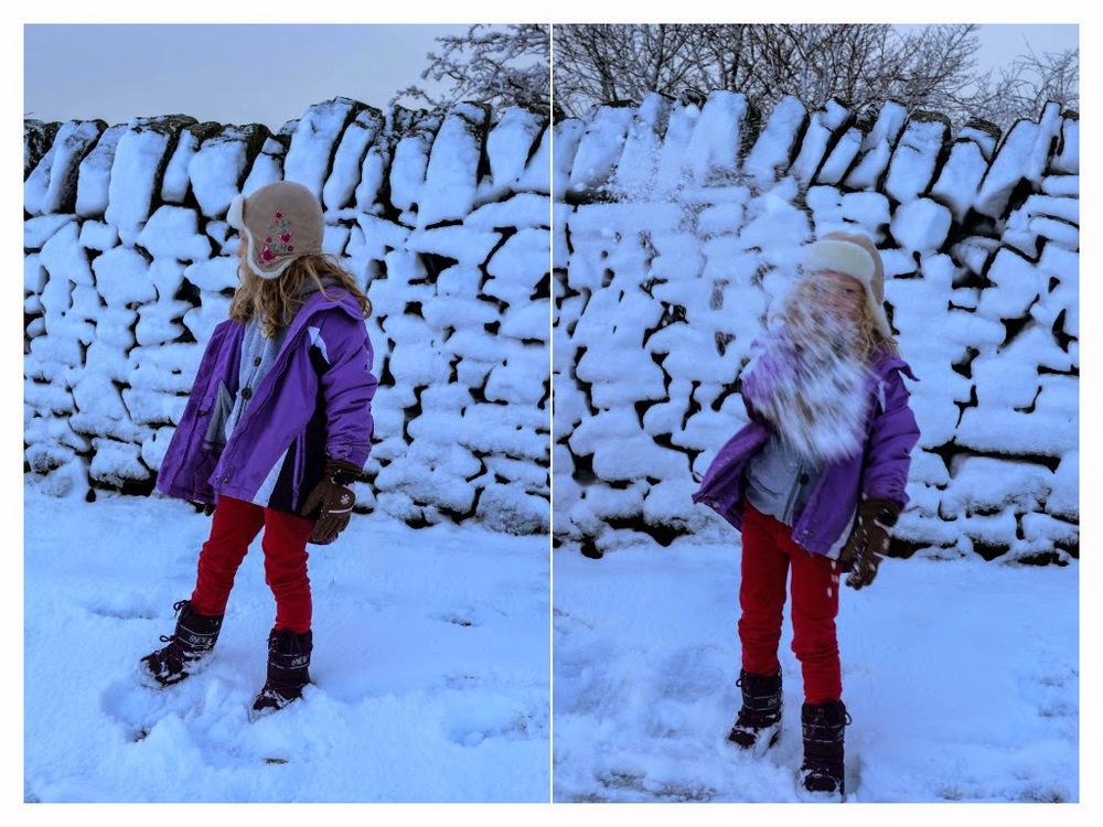 winter14f.jpg