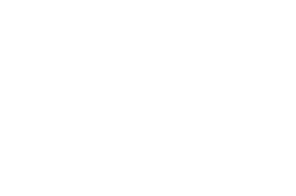 OFFICIAL SELECTION - Onion City Experimental Film  Video Festival - 2019-1.png