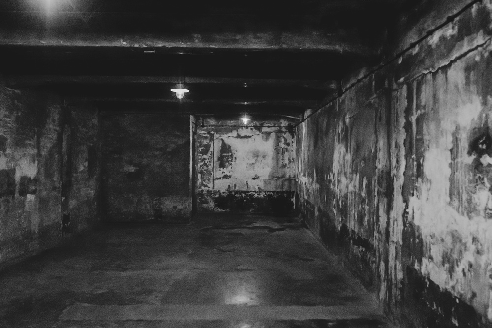 "Once in the chambers, the prisoners entered a small room with benches and numbers. Again, to keep them calm, they were instructed to remove their clothing and remember their numbers so they could find their items easily after the ""disinfectant shower"". They then were forced into these concrete rooms like the one above, where soldiers would dispense Zyklon B through holes in the ceiling, and then fill the room with gas. Witnesses commented that the soldiers treated this as nothing more than daily routine, taking smoke breaks and conversing casually. The chamber above is one of the first and only still standing chambers today. The Nazi's could murder 340 prisoners per 24 hours here, but when that couldn't keep up, they built bigger chambers to eliminate thousands at a time in Birkenau."