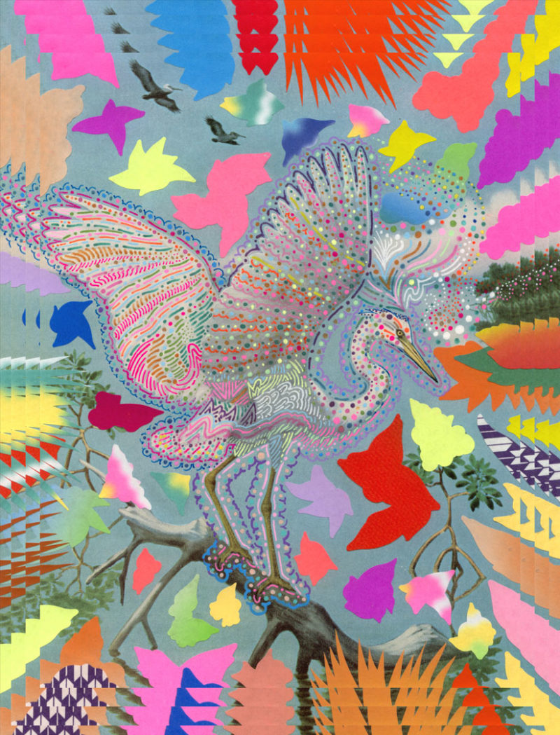 HM-HishamAkira-Birds-are-Amazing_24116aef6dc67229d9d5f1425f4dbc440a3988e0.1399500976-800x1049.jpg