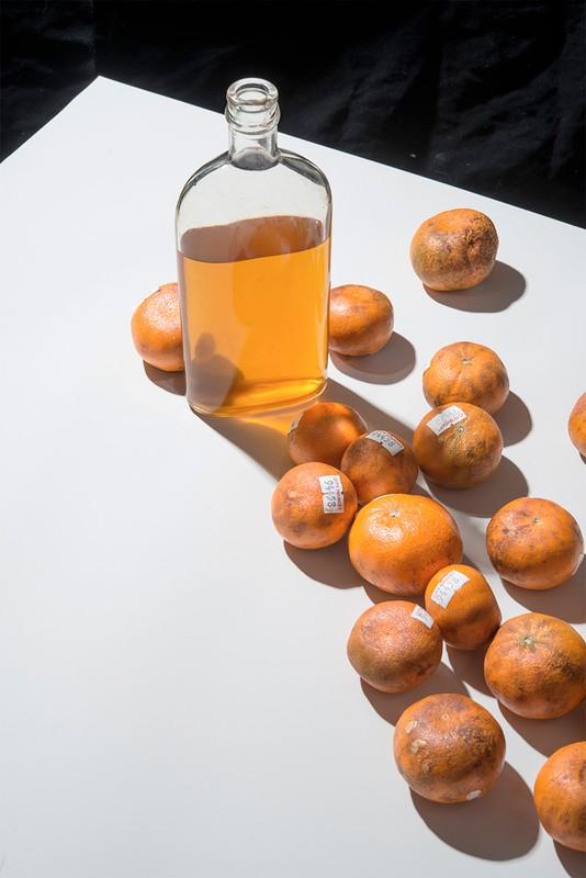 tangerine2_1_3.jpg