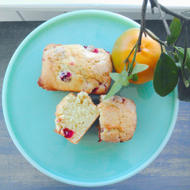 cranberry bread recipe holidays