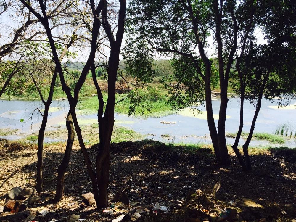 Walking alongside the Kaveri River