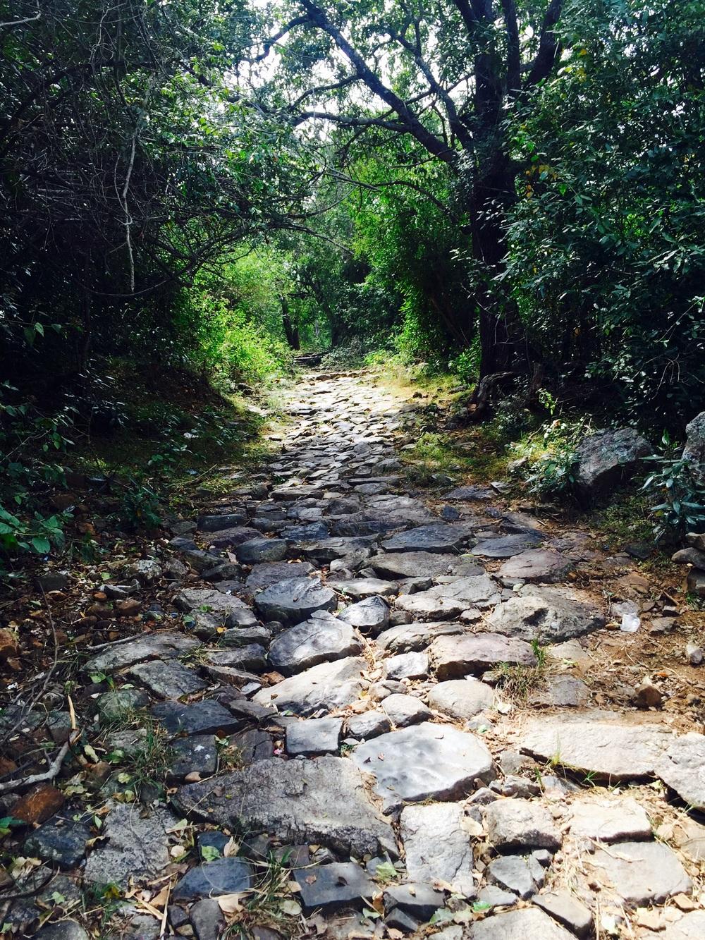 A Pilgram shortcut