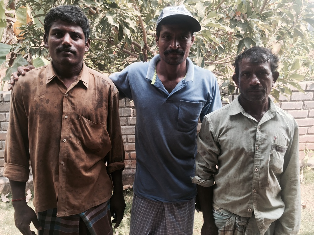 Indian Farmer (middle) and brothers