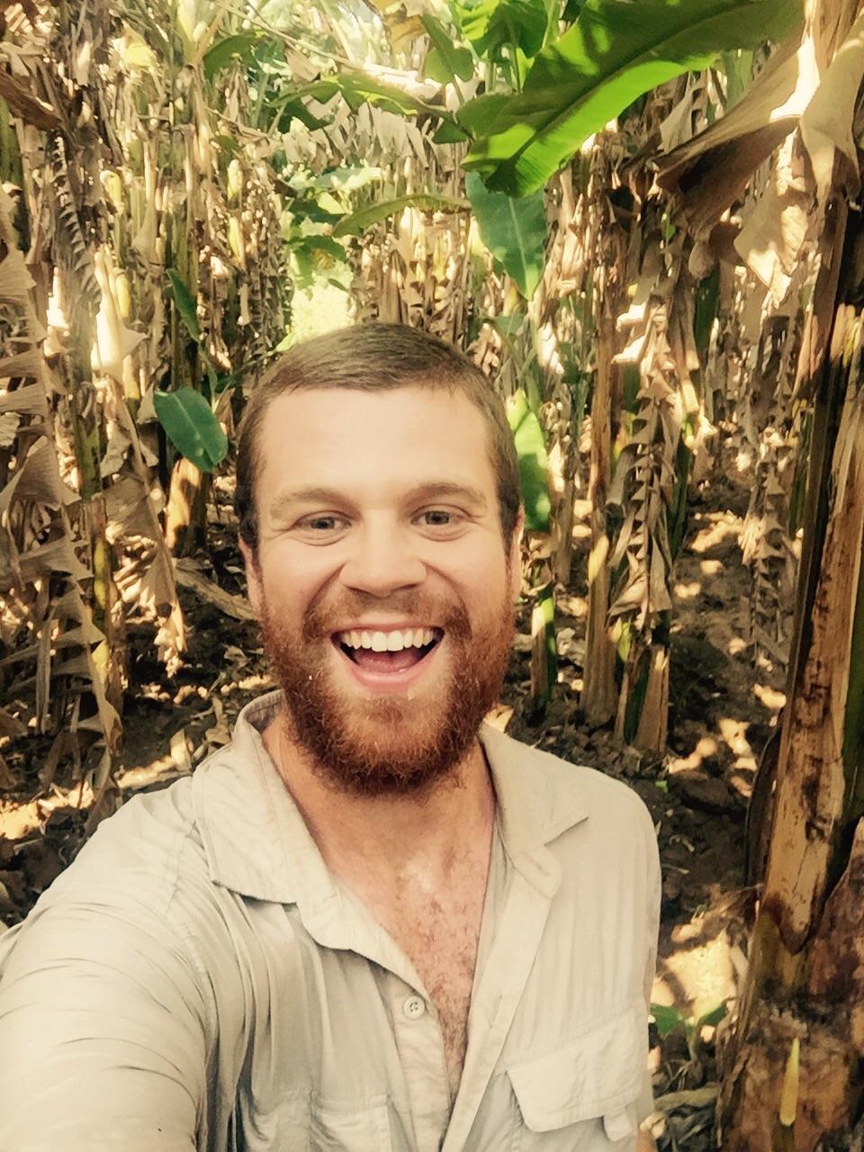 Wandering through the banana plantations