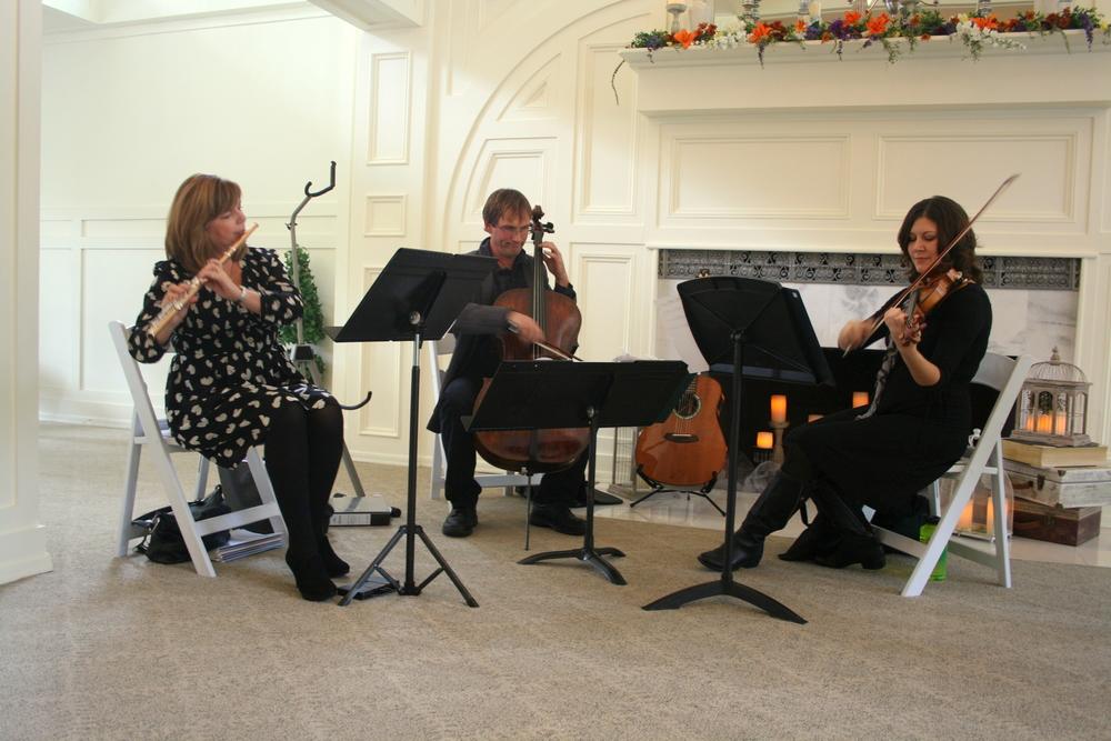 Trio Lumina Photo 6.JPG