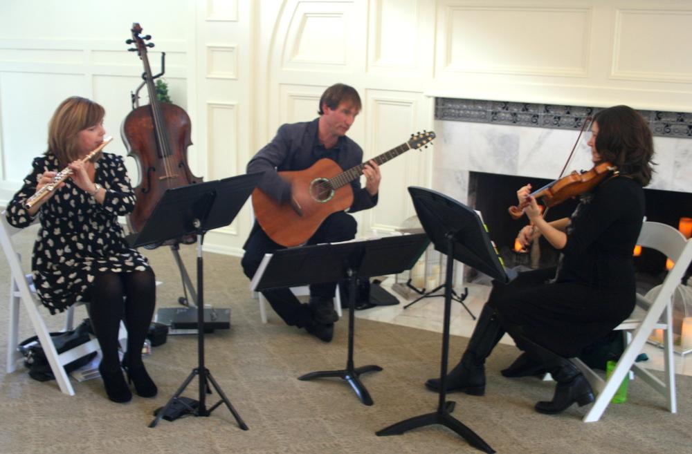 Trio Lumina Photo 10.JPG