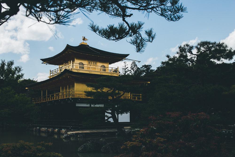 Japan17-web-1399.jpg