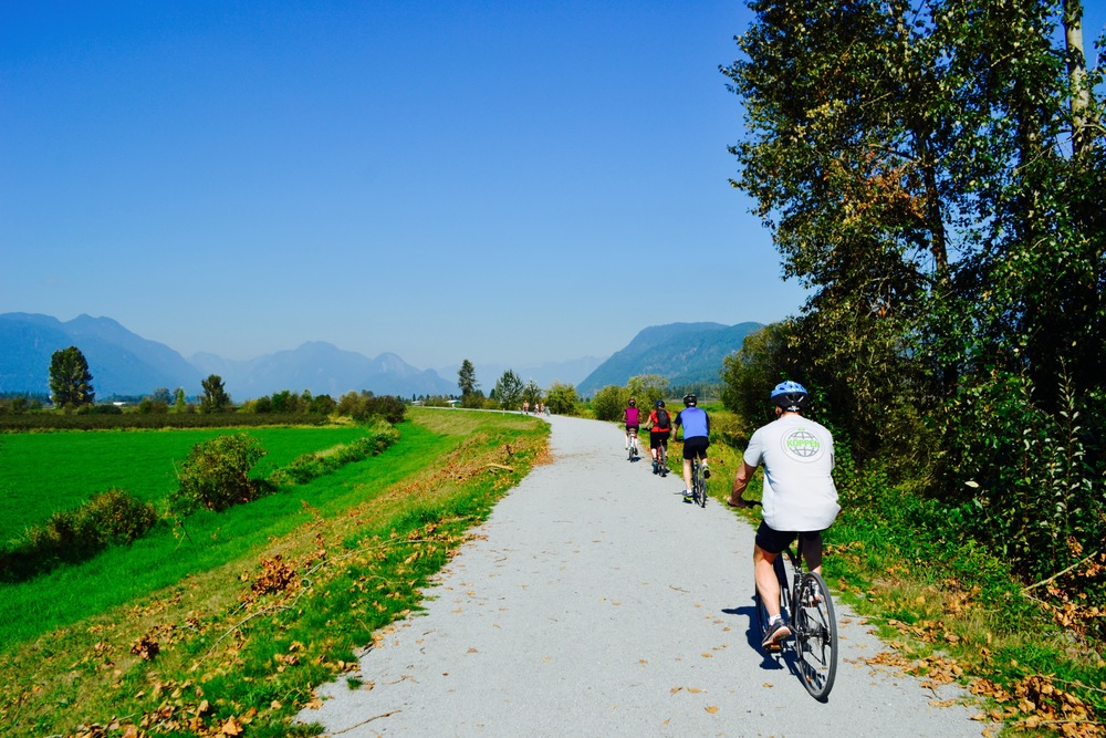 Cycling at Pitt Meadows during our one day Bike and Hike Tour