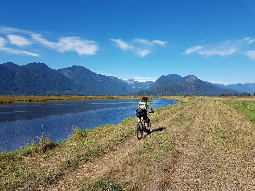 Biking through Pitt Addington Marsh with Pine Cone Burke Provincial Park in the background.