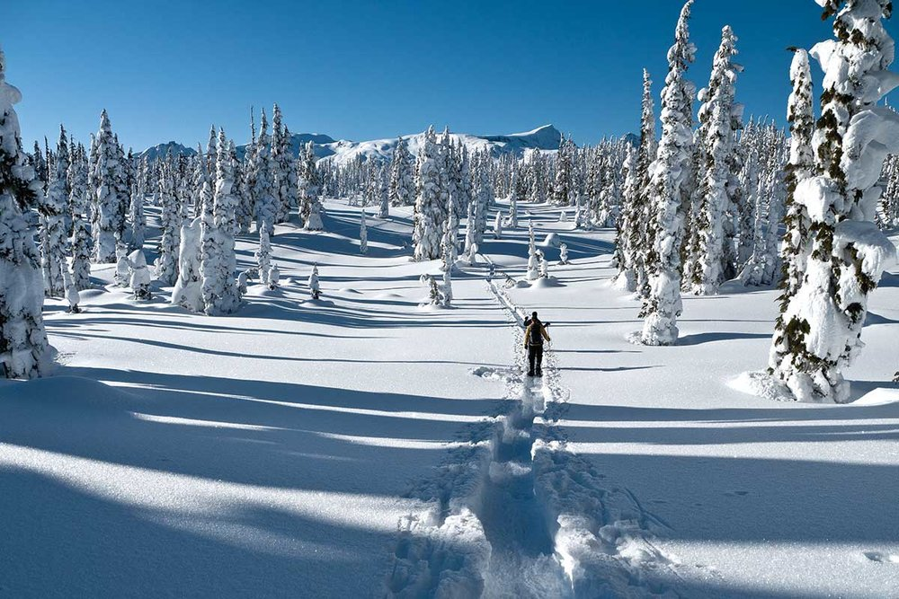 Our snowshoe guides will lead you to spectacular scenery