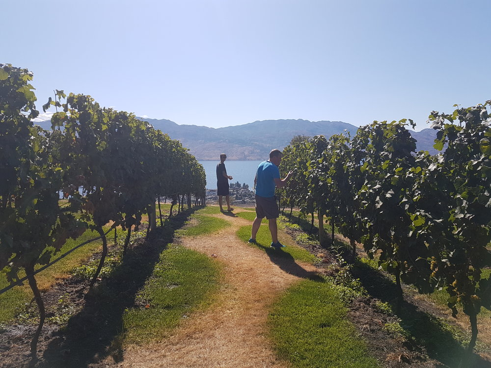 Walking in one of the wineries during our Multiday Okanagan Bike tour