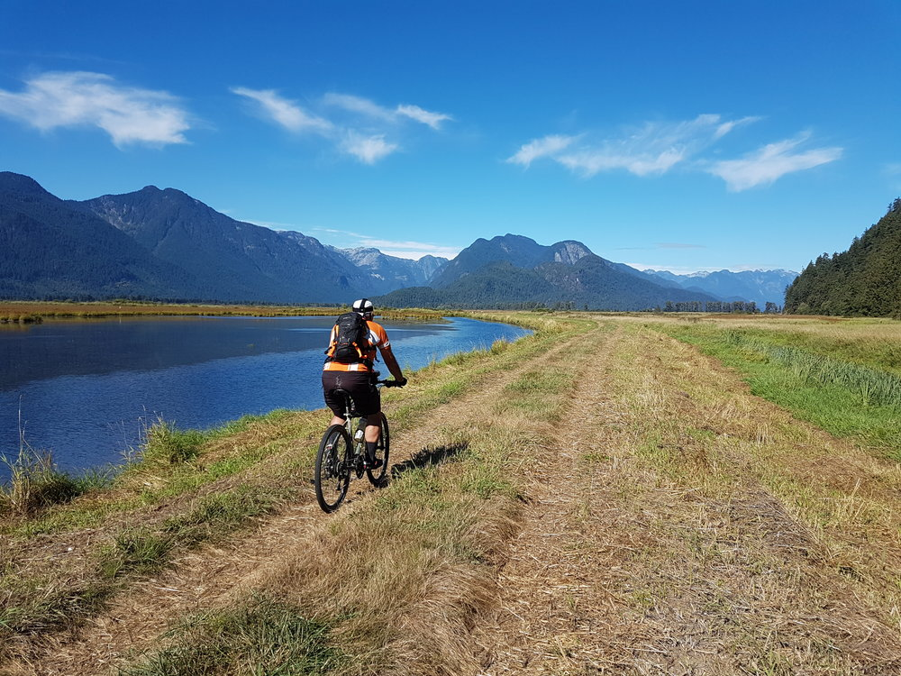 Incredible views of Pinecone Burke & Garibaldi Provincial Park on our private bike tours.