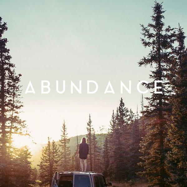abundance_cover.jpg