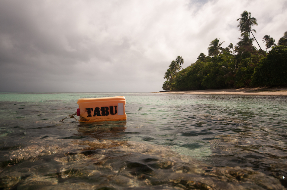 Tabu areas - periodically harvested fisheries closures - are widely implemented across the Melanesian Pacific