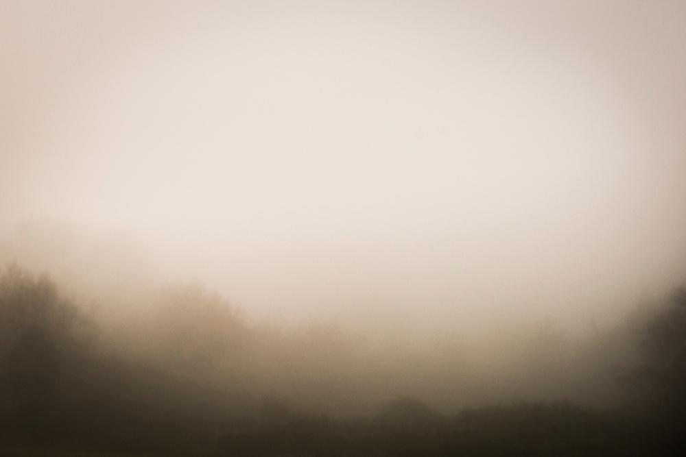 a91692907eb481fd-PageImage-521163-4567672-fog.jpg