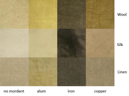 eucalyptus-moorei-subsp-moorei.jpg