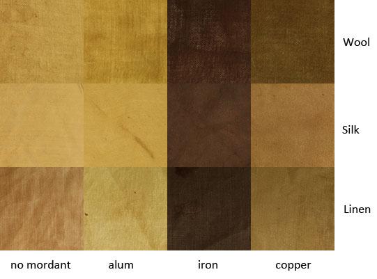 eucalyptus-socialis-bark.jpg