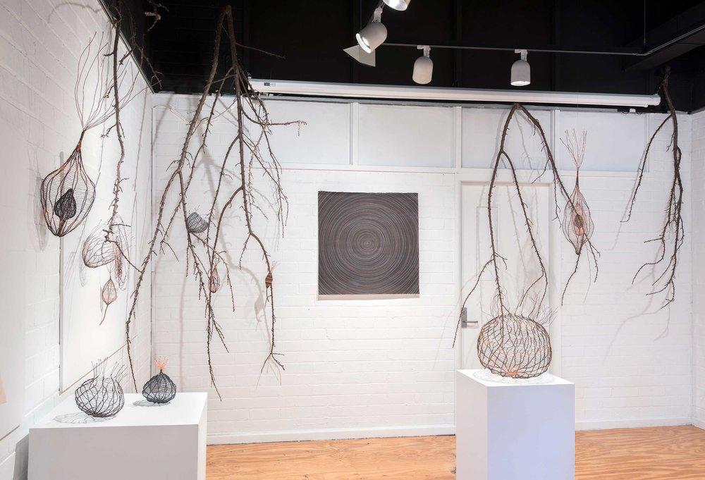 Exhibition Shot of Entangled Mysteries. Photo: Brenton McGeachie