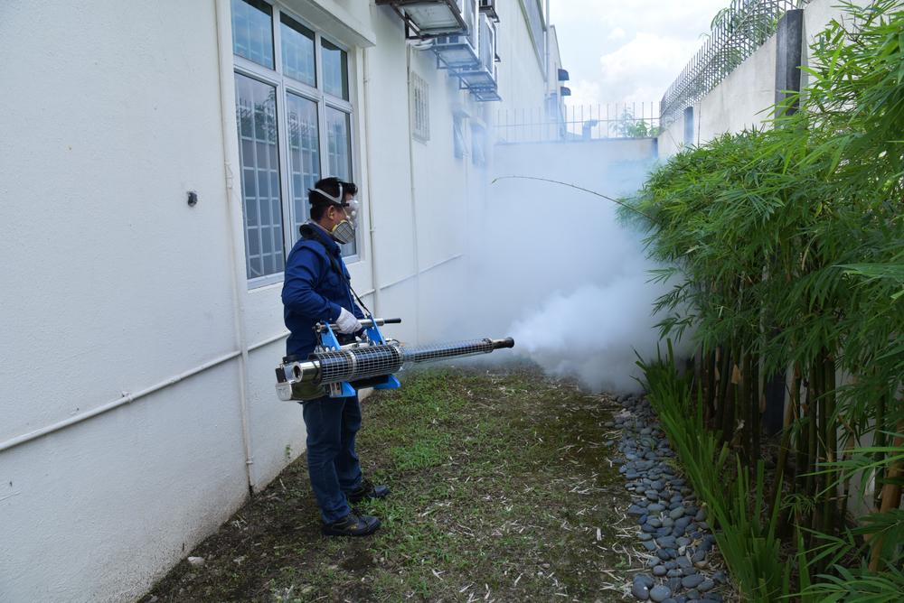 Our Services | Pest Control Service
