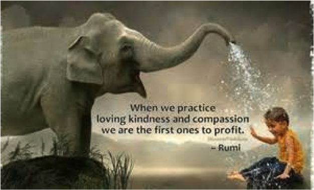 Kindness And Compassion Sunday Soul Connection