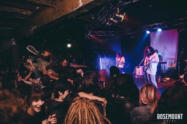 📸 @rachaelebb @rosemount_hotel #highvisceral #albumlaunch #psychedelicporncrumpets #music #perth #crowdsurf