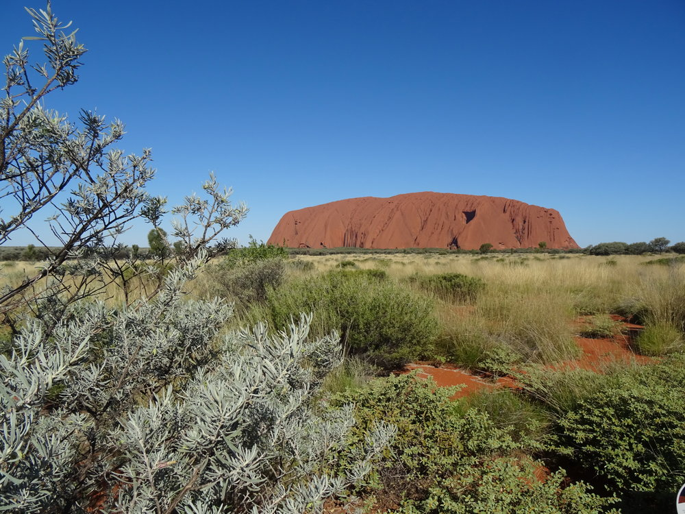 Uluru DSC02682 NT.JPG