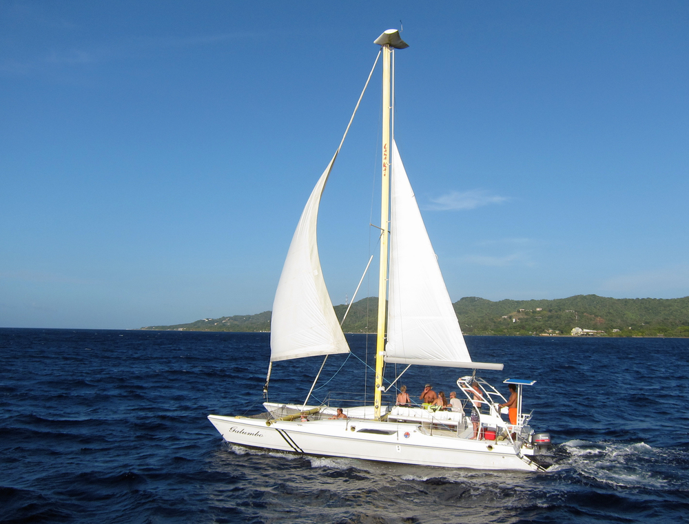 Catamaran Galumbo