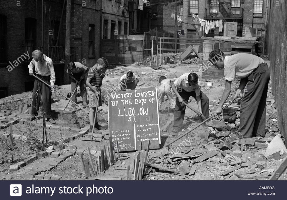 1940s-boys-working-in-wartime-victory-garden-ludlow-street-new-york-AAMR9G.jpg