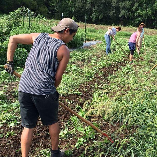 Earth Dance Organic Farm School