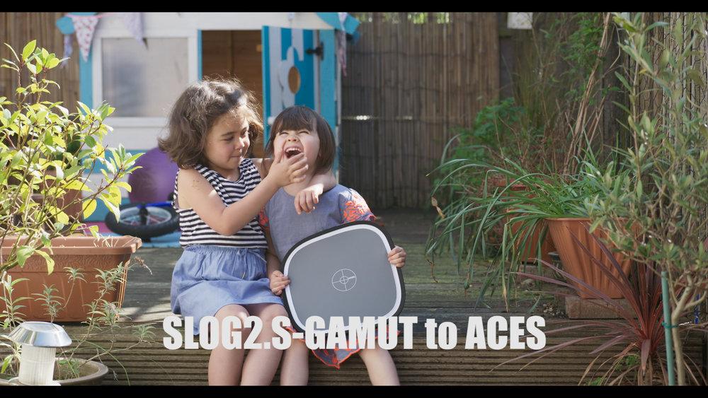 Slog2 ACES.jpg