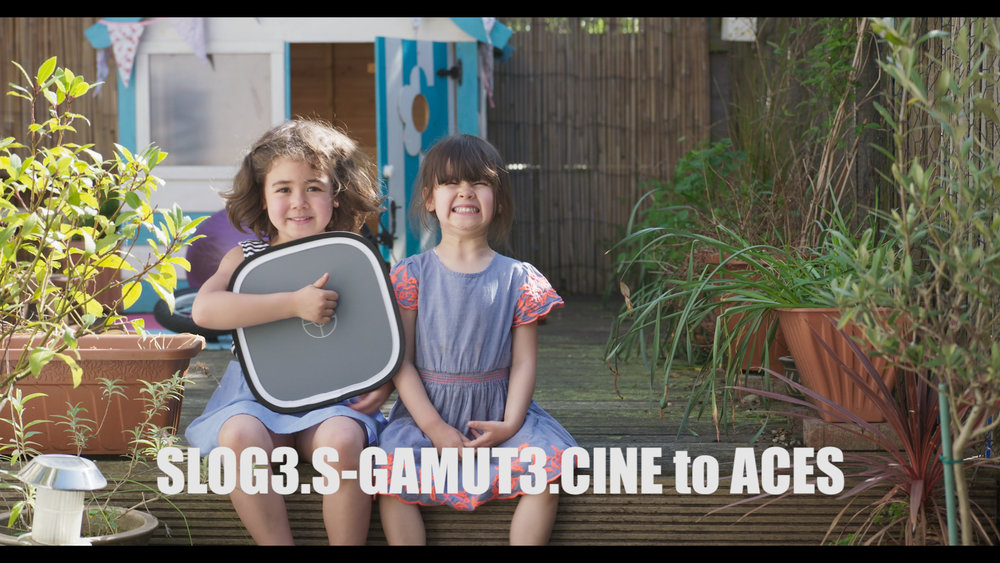 Slog3.Cine ACES.jpg