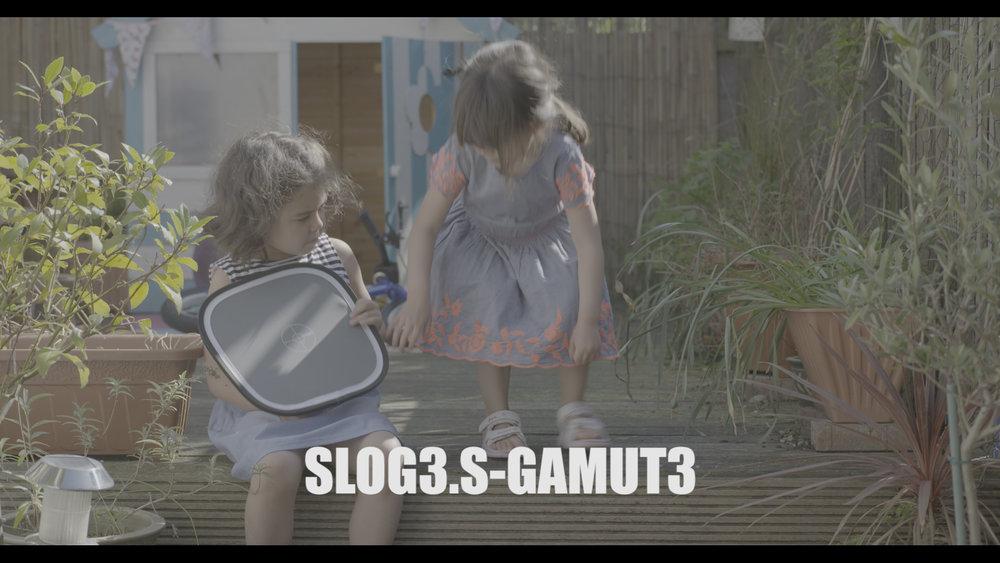 Slog3.jpg