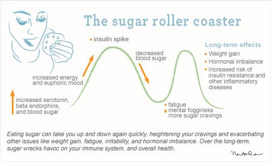 a montanha russa da glicose e insulina