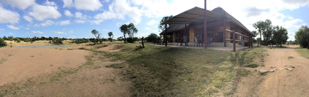 The Interaction Centre is the place where our elephants meet our guests.