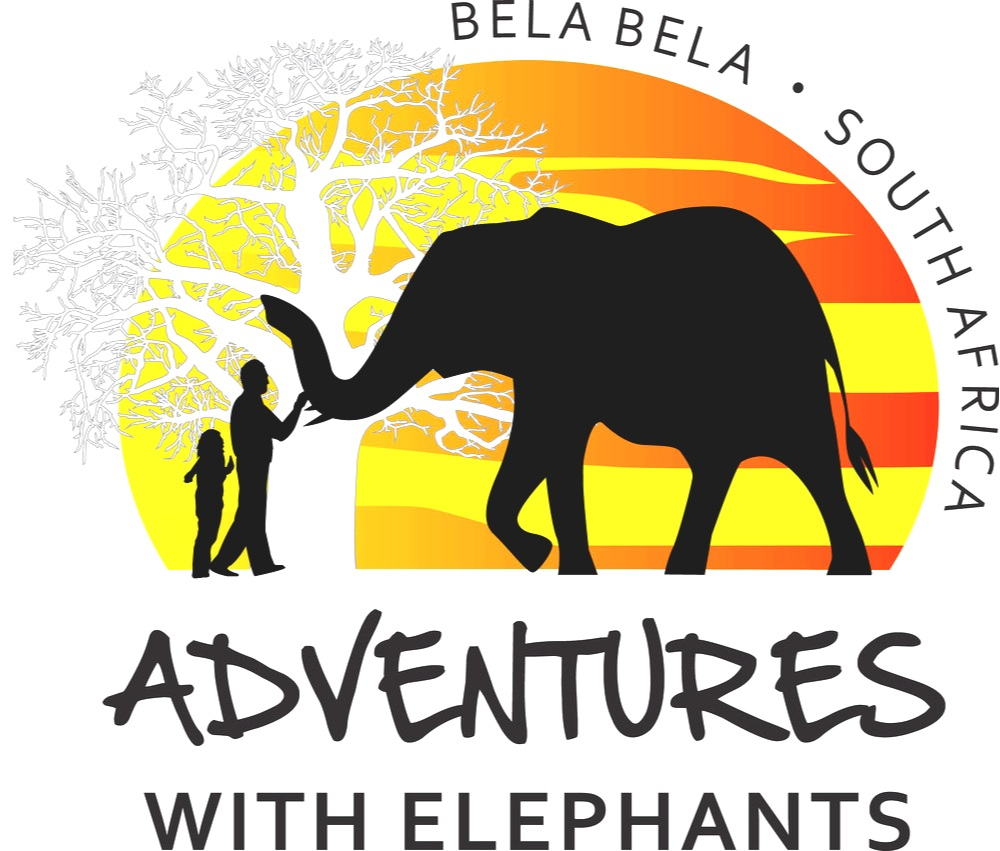 Adventures with elephants