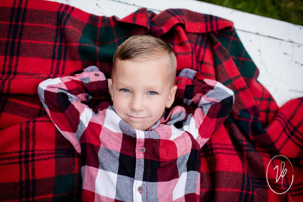 Viridian Ivy Images | Christmas Mini | Sylvania Family Photographer