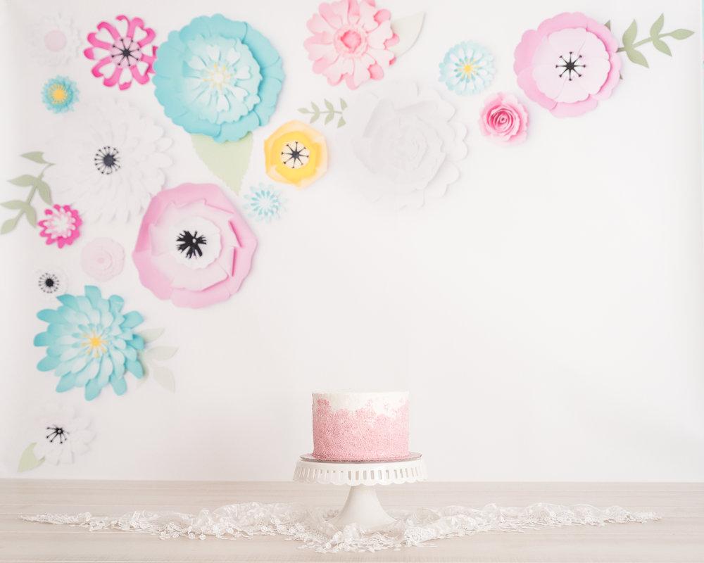 cake smash 5.jpg