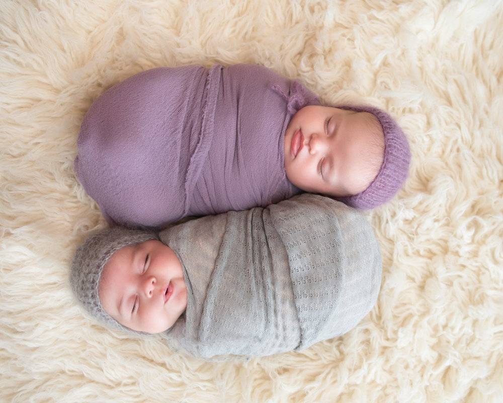 washington-dc-newborn-twin-photographer.jpg