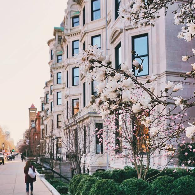 brian-MCW-Instagram-boston-back-bay-beacon-hill-visit-new-england.jpg1.jpg