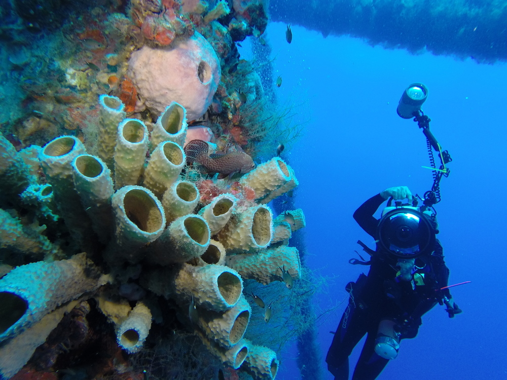 rigs-2-reef-explorers-blue-lattitudes-portsmouth-new-hampshire-blog-seacoast-lately.jpg27.jpeg