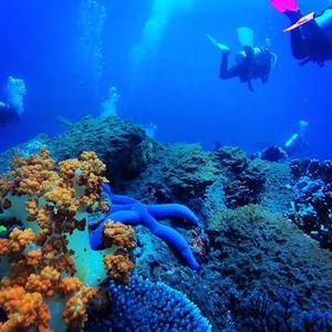 rigs-2-reef-explorers-blue-lattitudes-portsmouth-new-hampshire-blog-seacoast-lately.jpg9.jpg