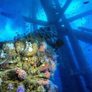 rigs-2-reef-explorers-blue-lattitudes-portsmouth-new-hampshire-blog-seacoast-lately.jpg11.jpg