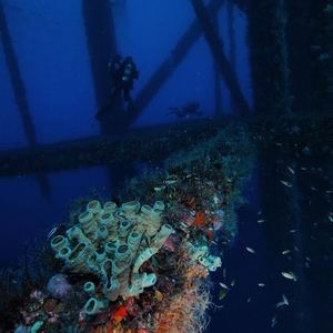 rigs-2-reef-explorers-blue-lattitudes-portsmouth-new-hampshire-blog-seacoast-lately.jpg